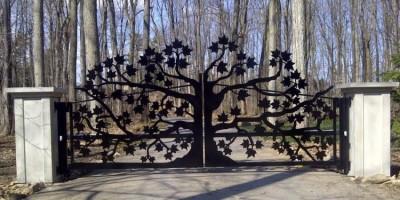 Les différents types d'éléments décoratifs en fer forgé