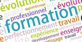 De nouvelles perspectives professionnelles en management